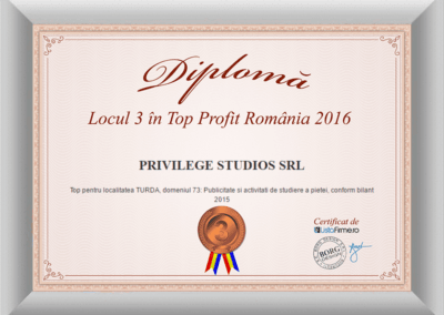 diploma-top-profit