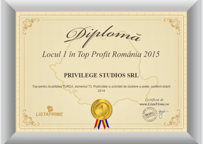 Top firme Romania 2014 2015 PRIVILEGE STUDIOS SRL CJ